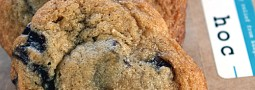 Chocolate Chip Cookies (Thomas Keller)